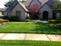 Landscaping Services - Lawn Cutting & Maintenance 5