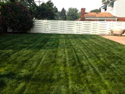 Landscaping Services - Lawn Cutting & Maintenance 6